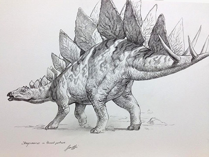 Stegosaurus pencil drawing